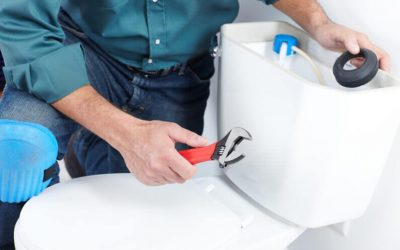 Toilet Plumbing: When to Call a Plumber for a Clogged Toilet
